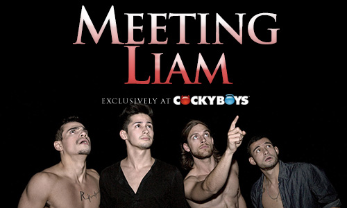 meetingliam500x300